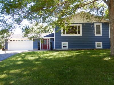 Wisconsin Dells Single Family Home For Sale: 1412 Pine Ct