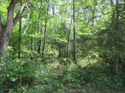 Friendship Residential Lots & Land For Sale: 2 Ac Wilderness Tr