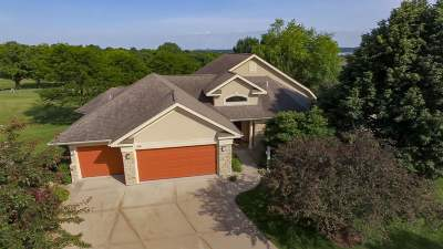 Dane County Single Family Home For Sale: 3901 Signature Dr