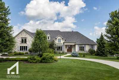 Dane County Single Family Home For Sale: 7680 Bridle Ridge Pass