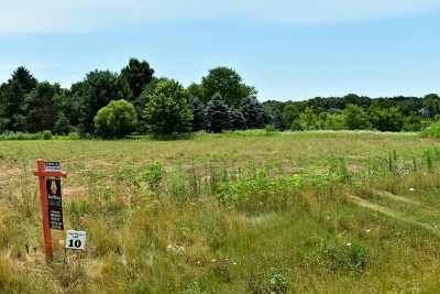 Verona Residential Lots & Land For Sale: L10 Loveland Pass