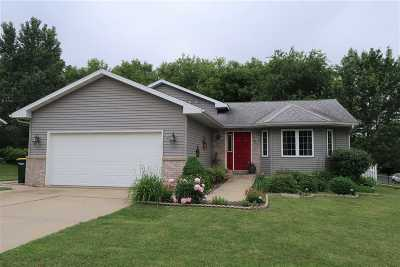 Dane County Single Family Home For Sale: 317 Springview Dr
