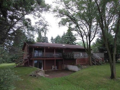 Wisconsin Dells Single Family Home For Sale: 381 S Freedom Ln