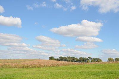 Sun Prairie Residential Lots & Land For Sale: L21 Burnson's Ridge