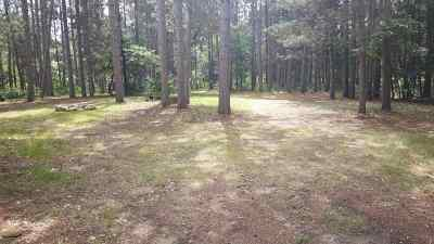 Friendship Residential Lots & Land For Sale: 986 S Chicago Ct