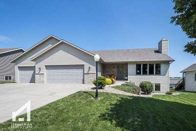 Dane Single Family Home For Sale: 214 Statz Ln