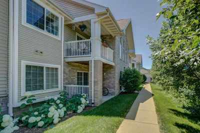 Dane County Condo/Townhouse For Sale: 5352 Congress Ave #4