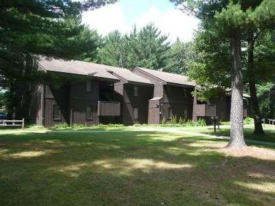 Wisconsin Dells Condo/Townhouse For Sale: 6 Pine Tr