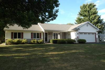 Lodi Single Family Home For Sale: 114 Vilas Hibbard Pkwy