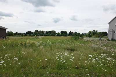 Sun Prairie Residential Lots & Land For Sale: L10 Manley Dr