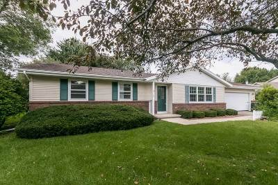 Stoughton Single Family Home For Sale: 408 Homme Ct