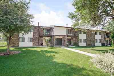 Madison Condo/Townhouse For Sale: 1013 N Sunnyvale Ln #H