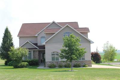Dane Single Family Home For Sale: 413 Capitol Dr
