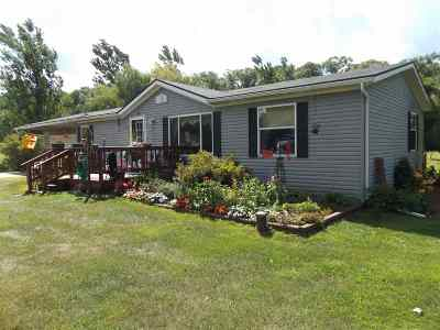 Wisconsin Dells Single Family Home For Sale: 1033 Gale Dr