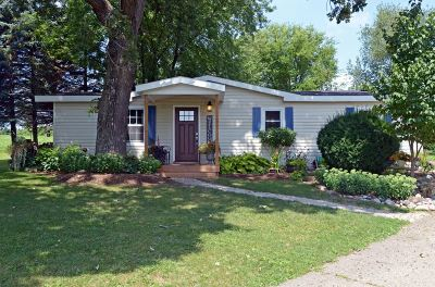 Dane County Single Family Home For Sale: 2042 Branch Rd