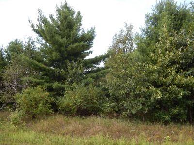 Wisconsin Dells Residential Lots & Land For Sale: L2 Gillette Ln