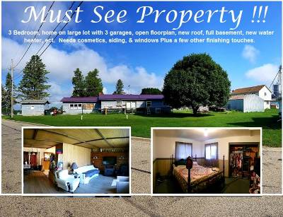 Iowa County Single Family Home For Sale: 312 Church St