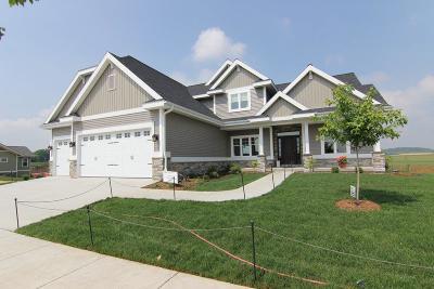 Sun Prairie Single Family Home For Sale: L36 Wagner's Vineyard Tr