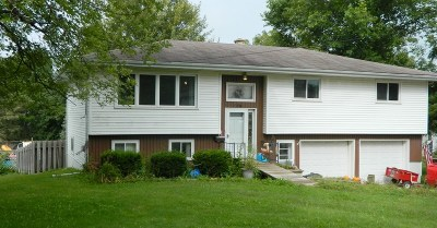 Green County Single Family Home For Sale: 489 E Dale St