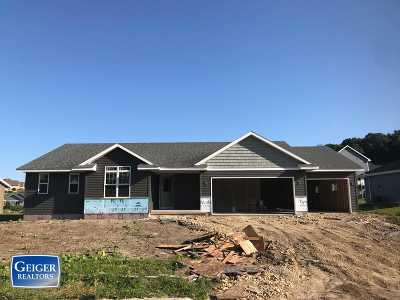 Black Earth Single Family Home For Sale: 3046 Valley St