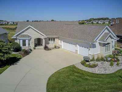 Dane County Single Family Home For Sale: 1430 Blue Ridge Tr