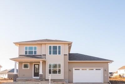 Madison Single Family Home For Sale: 7156 Littlemore Dr