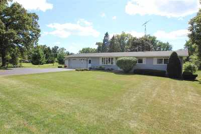 Walworth County Single Family Home For Sale: 128 Donna Ave