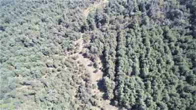 Wisconsin Dells Residential Lots & Land For Sale: 36.44 Ac Hwy 13