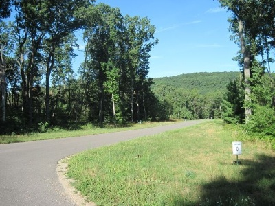 Friendship Residential Lots & Land For Sale: L24 Czech Pass