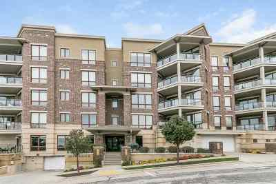 Monona Condo/Townhouse For Sale: 101 Ferchland Pl #305