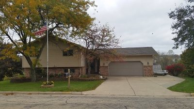 Iowa County Single Family Home For Sale: 203 Arneson Rd