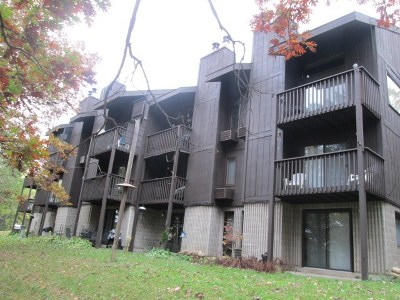 Wisconsin Dells Condo/Townhouse For Sale: 11 Hawthorn Tr #11