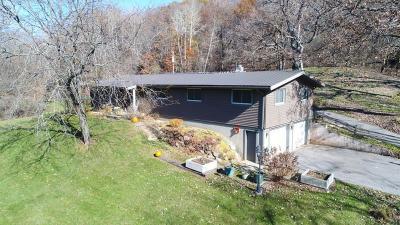 Sauk County Single Family Home For Sale: S10690 Wilson Creek Rd