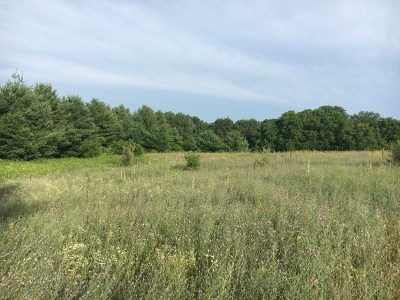 Wisconsin Dells Residential Lots & Land For Sale: L1 N Grouse Ln