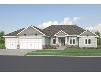 Cottage Grove Single Family Home For Sale: 3001 Red Hawk Tr