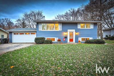 Stoughton Single Family Home For Sale: 601 West St
