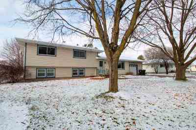 Sun Prairie Single Family Home For Sale: 1110 Werner Ct