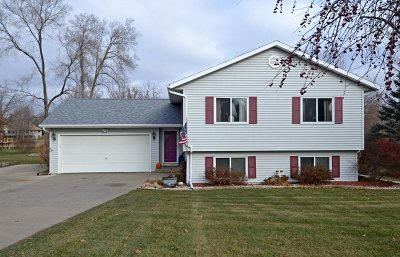 Pardeeville Single Family Home For Sale: N6892 Raymond Rd