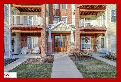 Monona Condo/Townhouse For Sale: 155 Shato Ln