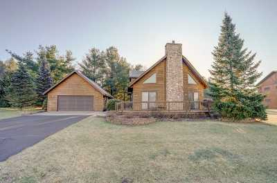Wisconsin Dells Single Family Home For Sale: 210 Berry Ln