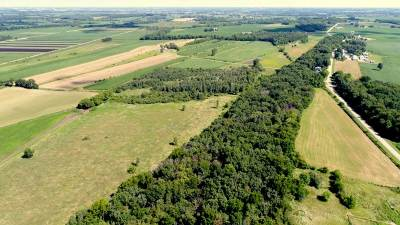 Marshall Residential Lots & Land For Sale: 50 Ac Oak Park Rd