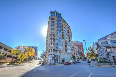 Madison Condo/Townhouse For Sale: 125 N Hamilton St #1006