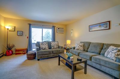 Madison Condo/Townhouse For Sale: 1001 N Sunnyvale Ln #D