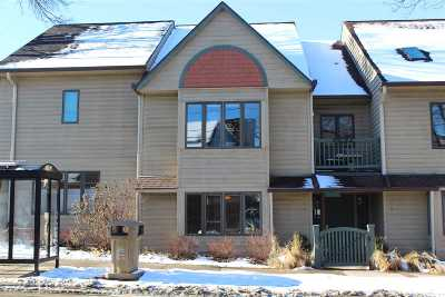 Madison Condo/Townhouse For Sale: 4 N Allen St #D