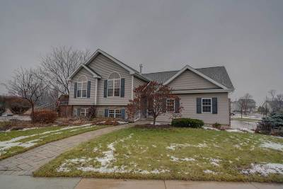 Madison Single Family Home For Sale: 4201 Bellgrove Ln