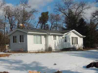Wisconsin Dells Single Family Home For Sale: 866 Fur Ave