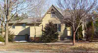 Mount Horeb Single Family Home For Sale: 119 N 2nd St