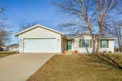 Dane County Single Family Home For Sale: 552 Meadowview Ln