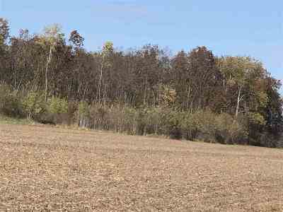 Wisconsin Dells Residential Lots & Land For Sale: 40 Ac Golden Ave