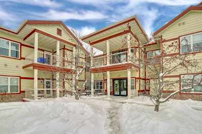 Sun Prairie Condo/Townhouse For Sale: 1300 School St #211